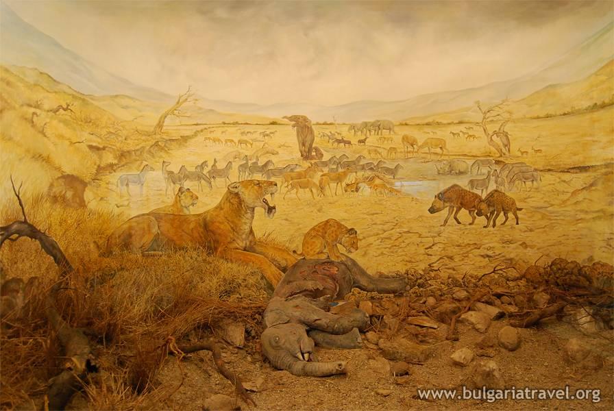 Палеонтологичен музей – град Асеновград